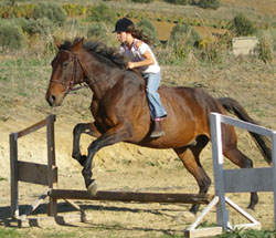 Horse riding in Italy.