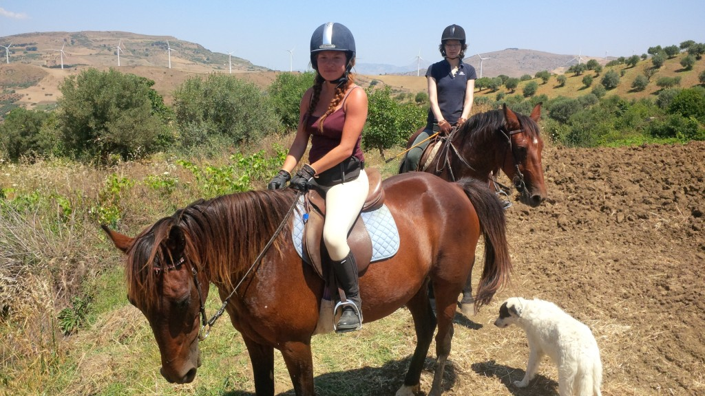 Horse riding Sicily